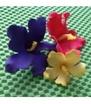 FMM Set de Cortadores Flor Hawaiana set 3