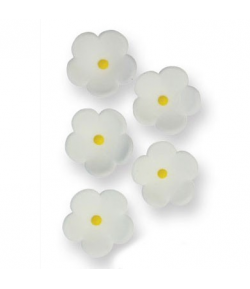 PME Flores Medianas Blancas, 30 unidades
