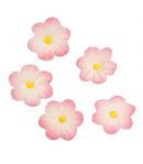 Culpitt Decoraciones Azúcar Flores Rosas, 12u.